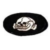 Gestapo Skull Patch